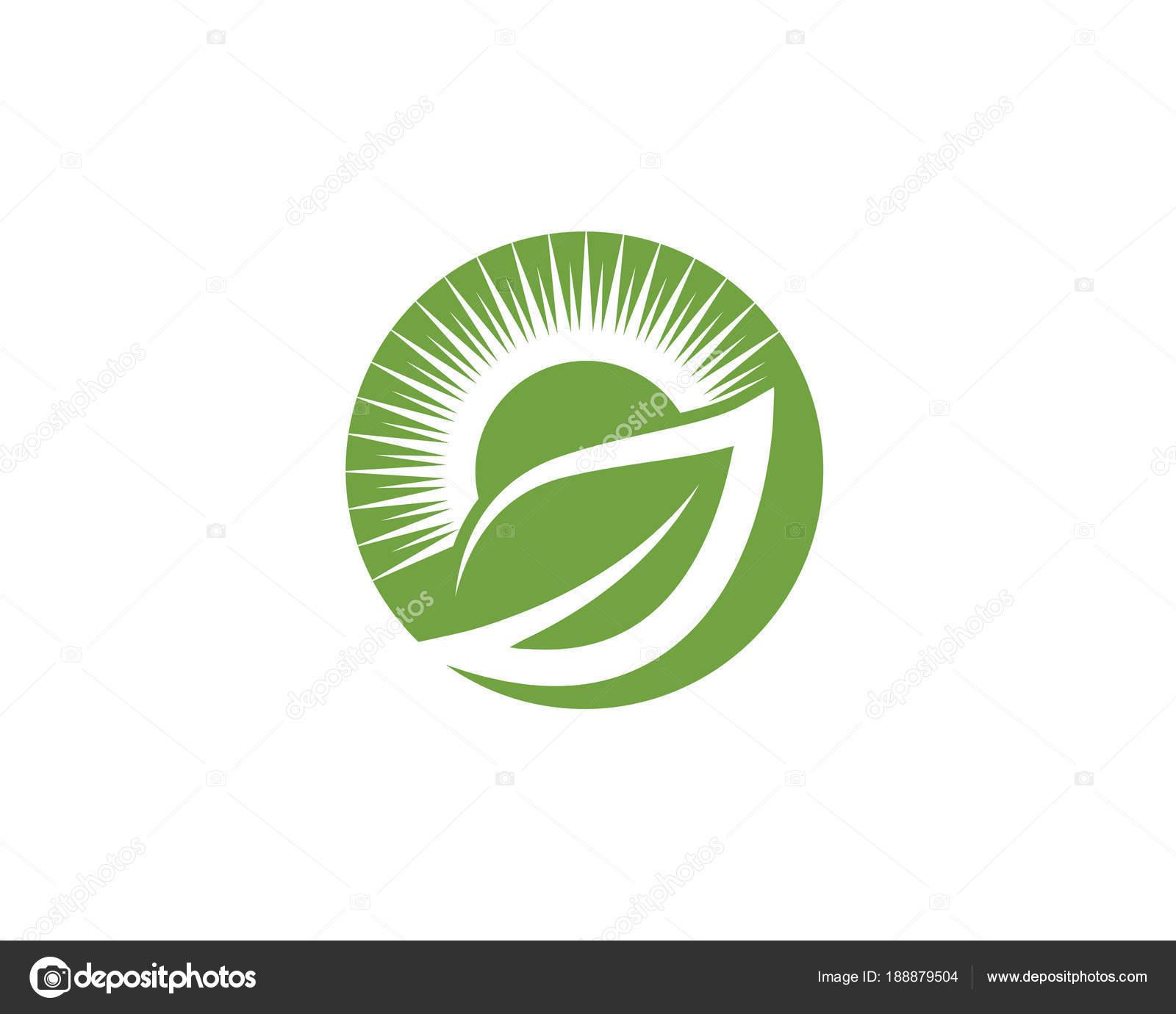 Naturaleza de la ecología de hoja plantilla de logotipo — Vector ...