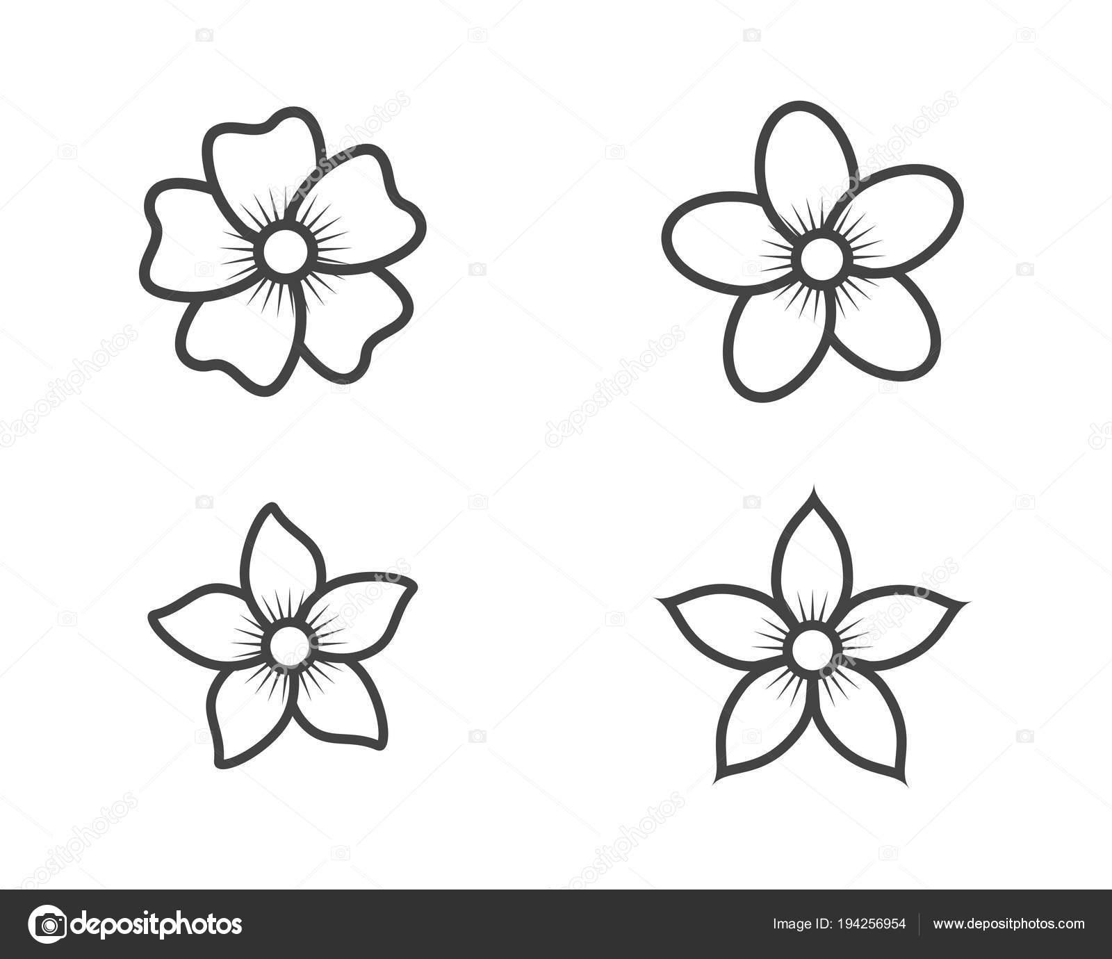 Jasmin Blume Symbol Logo Vorlage — Stockvektor © elaelo #194256954