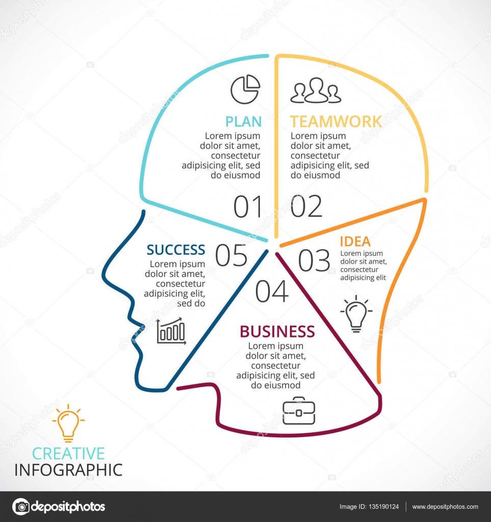 Vektor Gehirn lineare Infografik. Vorlage für menschlichen Kopf ...