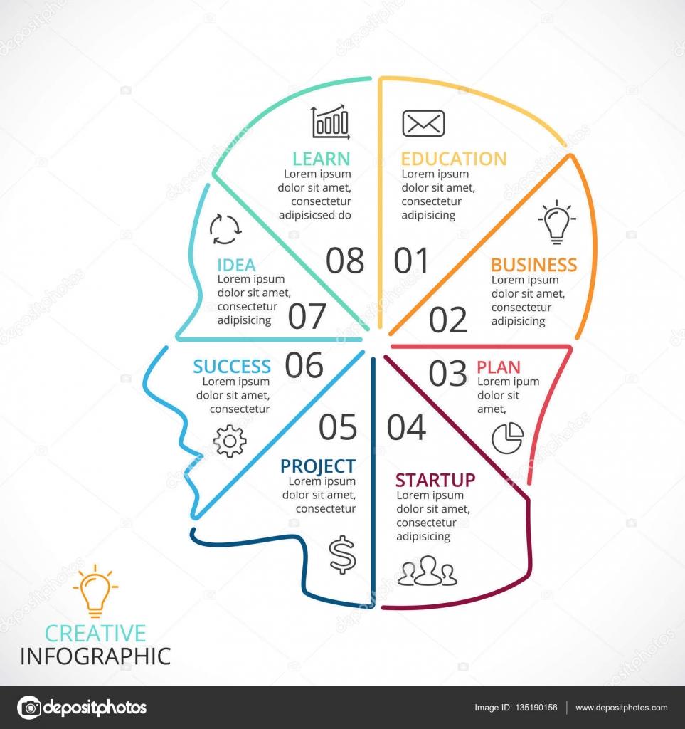 Vector cerebro infografía lineal. Plantilla de diagrama de cabeza ...