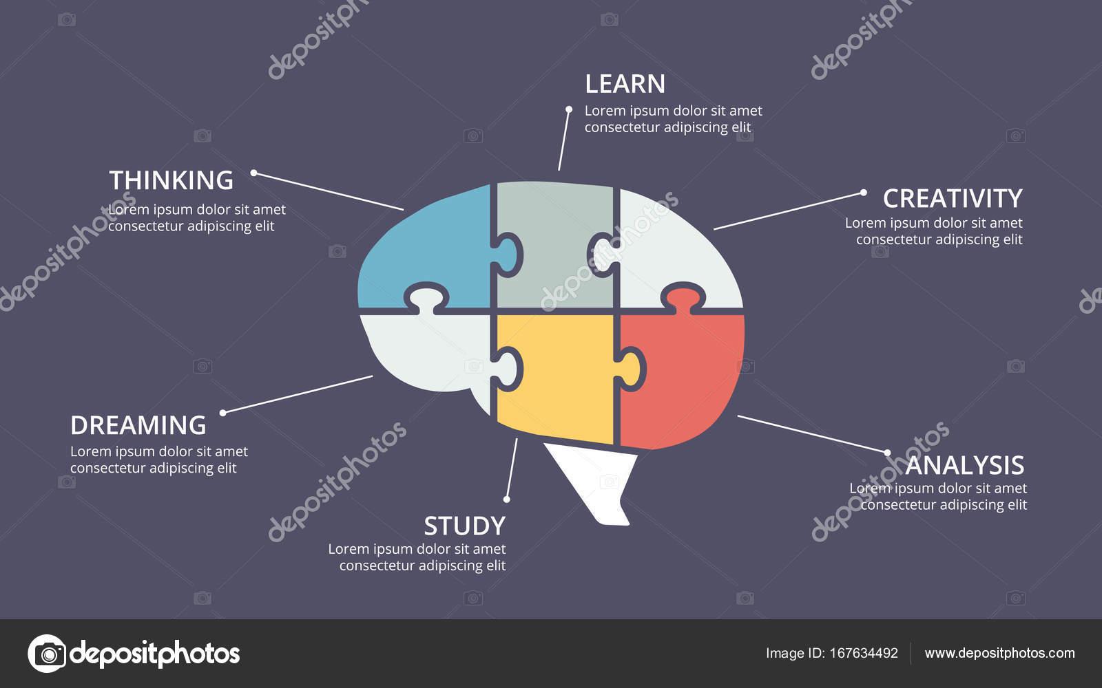 Infografía de cerebro de vector. Plantilla de diagrama de la mente ...