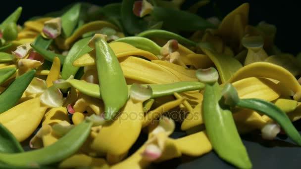 Heap petal of Ylang-Ylang flower on black background,panning shot