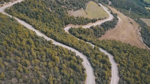 Drone flies over a European road that runs through a mountain of pine trees with curves and car traffic
