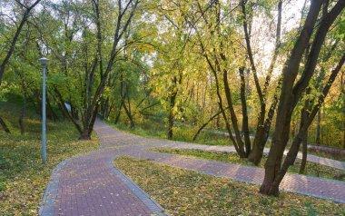 Pedestrian walkways in the park