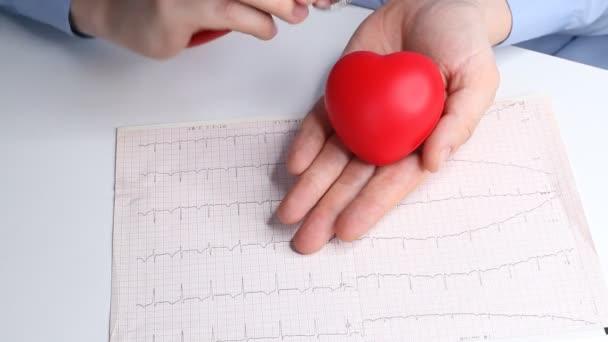 Lékař kardiolog kontroluje srdeční frekvenci na červeném srdci. Fonendoskop, stetoskop a kardiogram. Koncepce zdravotní péče a včasné diagnózy.