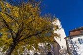 Fotografie Wallfahrt Kirche Wies (Wieskirche) in Alpen, Bayern, Deutschland