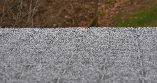 Statický záběr ledových krystalů pádu na střeše domu během ledová bouře