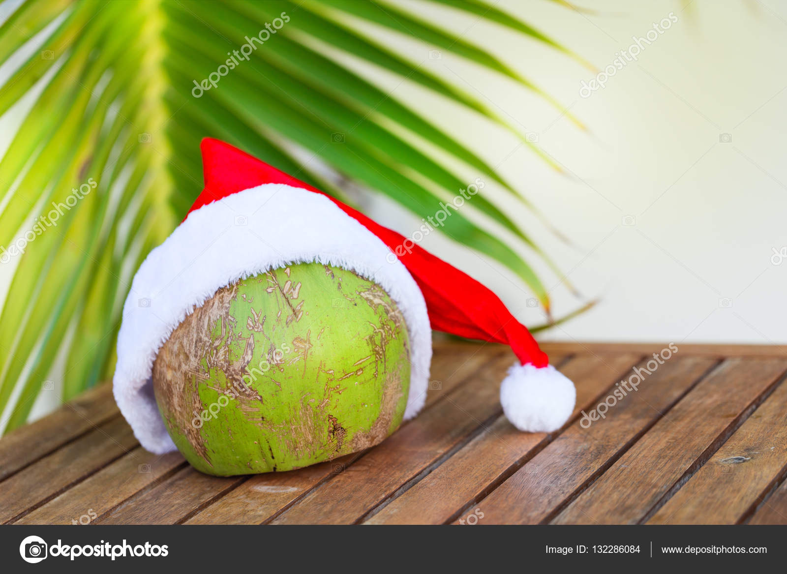 Foto tropicale della noce di cocco in un cappello rosso di Natale e palm  lascia all aperto — Foto di annamoskvina c4ce60ff7e33