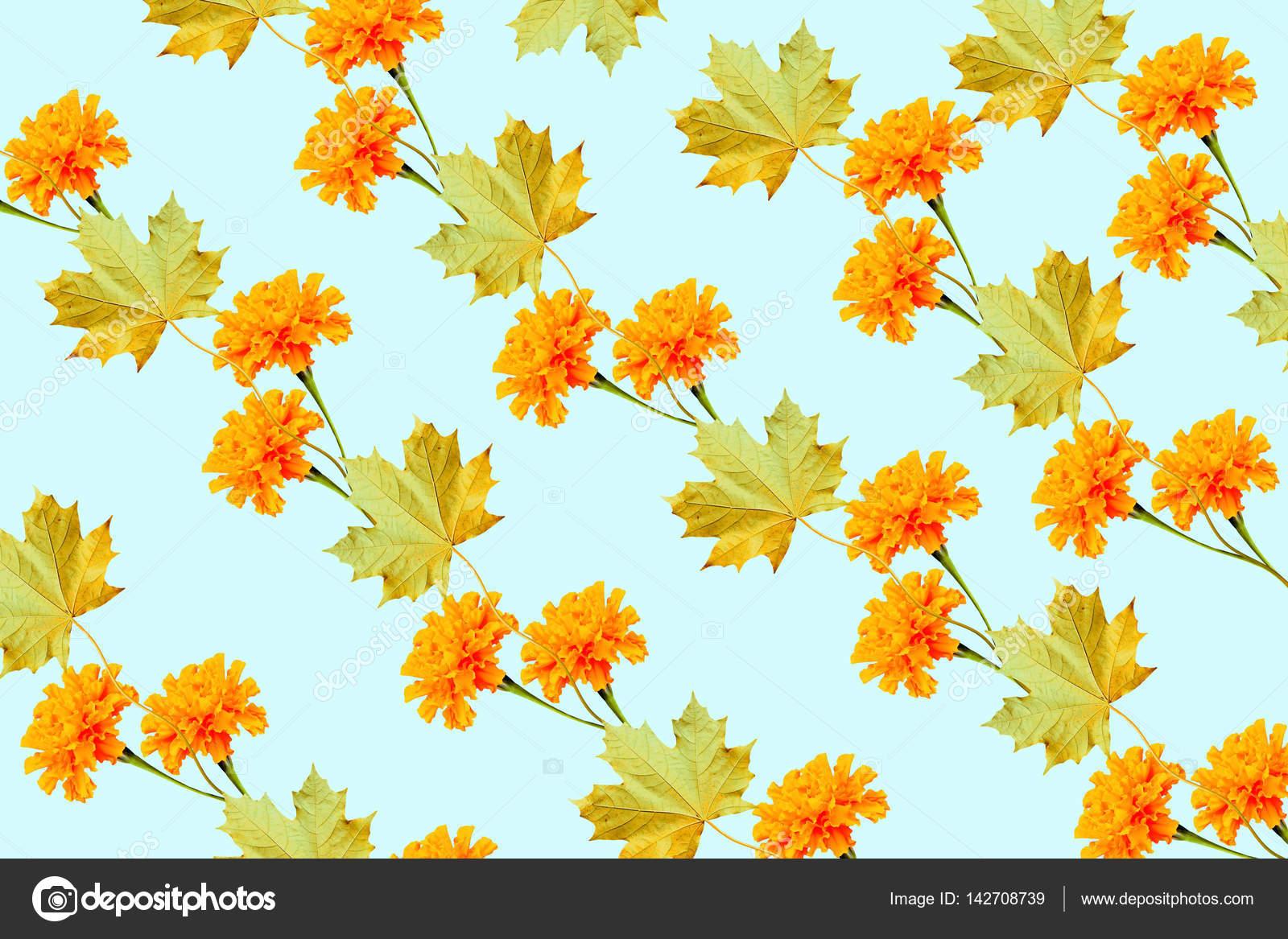 Fleurs De Souci Colore Et Lumineux Et Des Feuilles D Automne