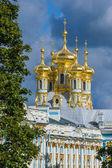 Catherine palác Puškin