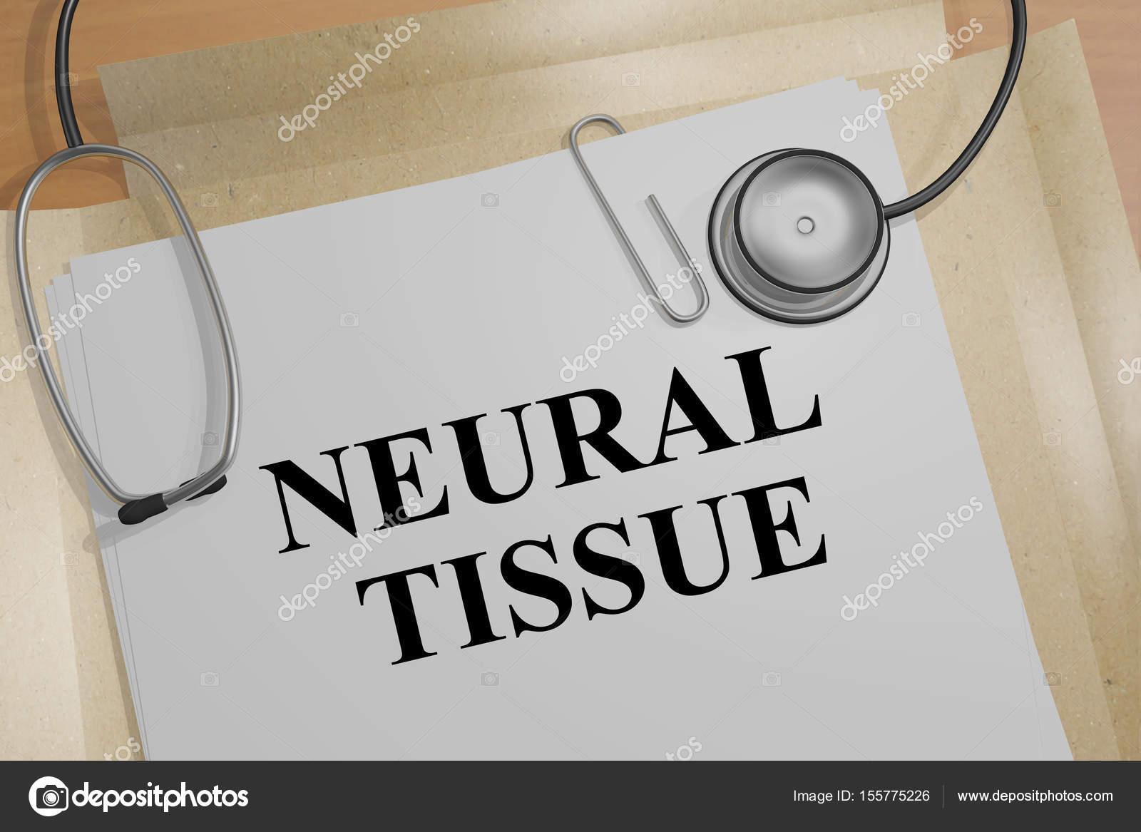 Nervengewebe - anatomische Konzept — Stockfoto © Premium_shots ...