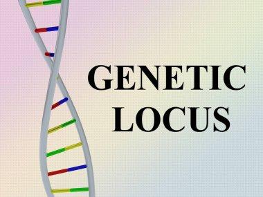 GENETIC LOCUS concept