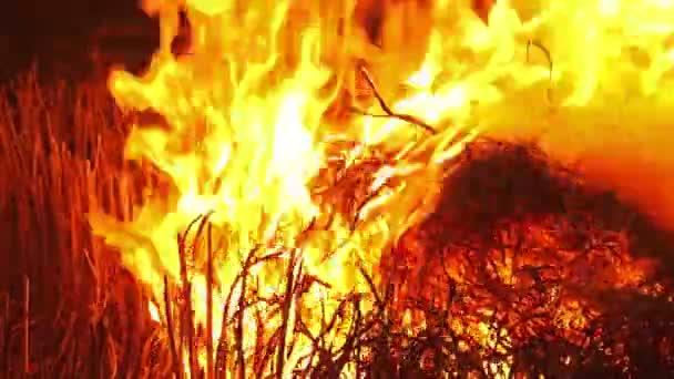 Feuer verbrennt Stroh in der Dunkelheit