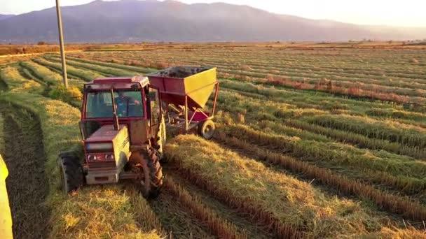 Kombajn přenos sklizeň v traktoru kontejneru. kukuřice, rýže, žito sklizeň zemědělské půdy při západu slunce. Kapesní Shot