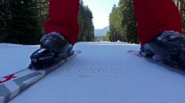 Low angle of skiers legs on slope with trees at side
