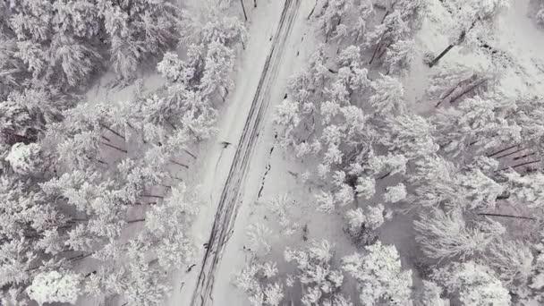 Venkovská silnice v zasněženém lese v zimním čase, letecký výhled z dronu. Scénická zimní krajina.