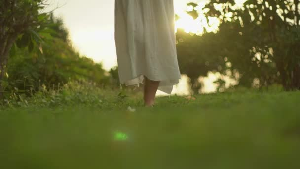 slim girl in a white dress walks in the rays of the evening sun back view going down a forest trail enjoying warm air