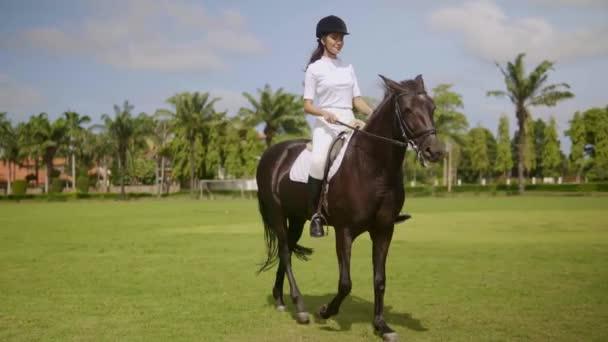 junge attraktive Reiterin auf dem Pferd bei sonnigem Tag schreitet über offenes Feld und hat wunderbare Zeit