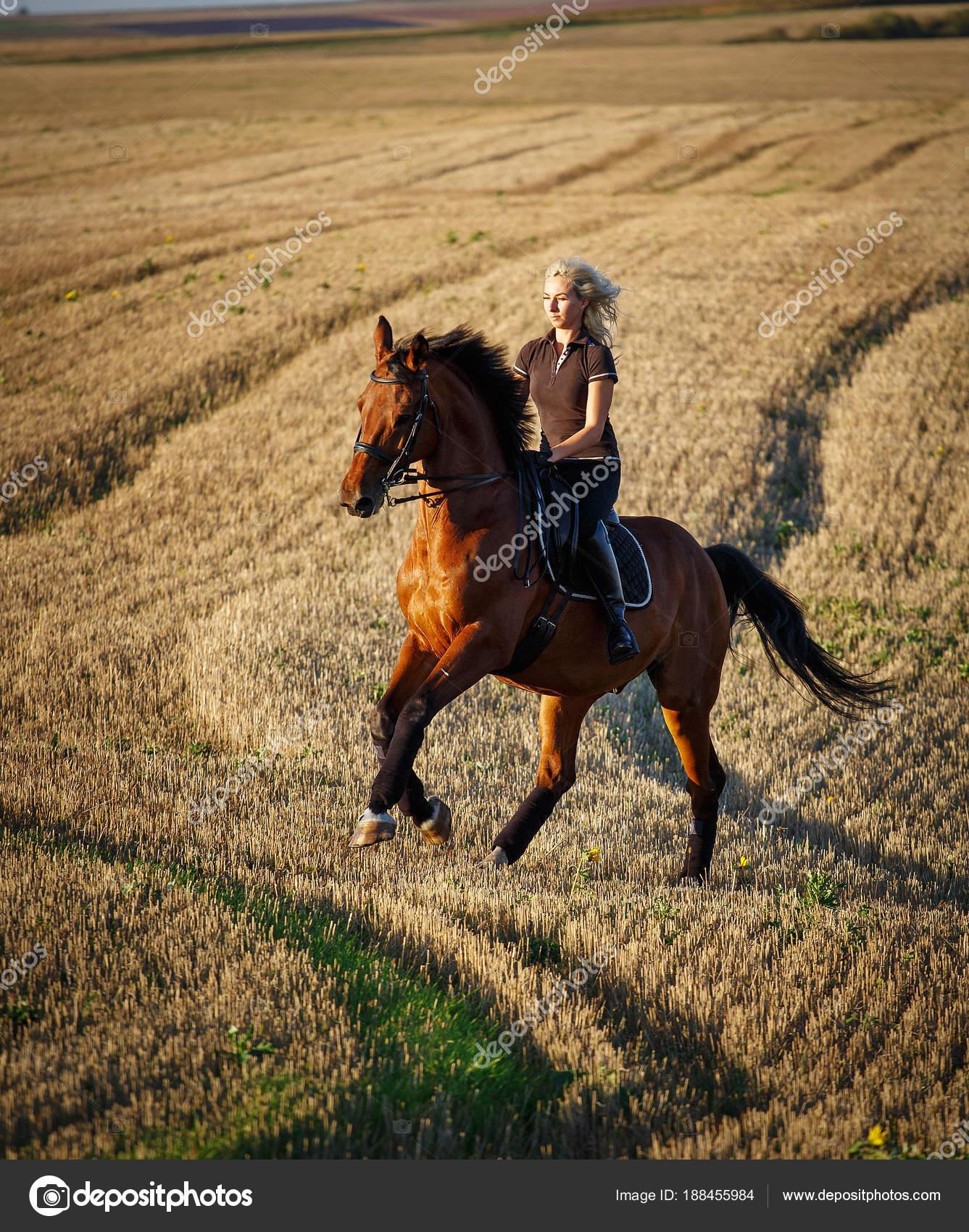 Obraz Konia Z Rider W Konkurencjach Jeździeckich Sportowych