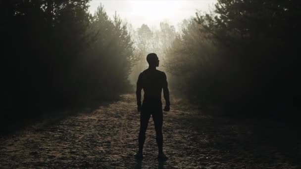 Rear view of Muscular handsome man With Naked Torso Stands In The forest and breathes deeply. dawn, sunset, sunrise. Amazing landscape