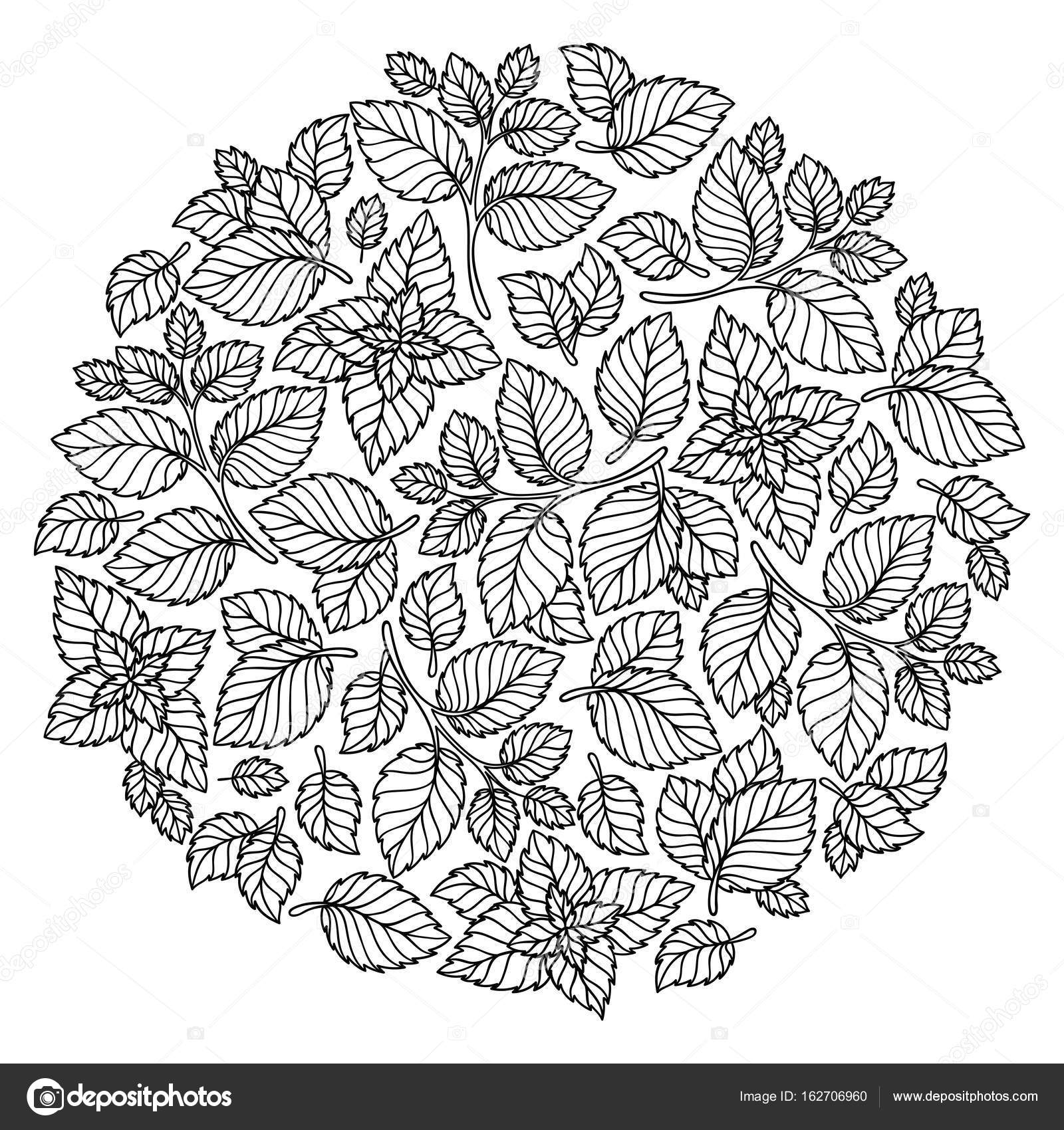 Pattern for coloring book. Leaves. — Stock Vector © karpenyuk #162706960