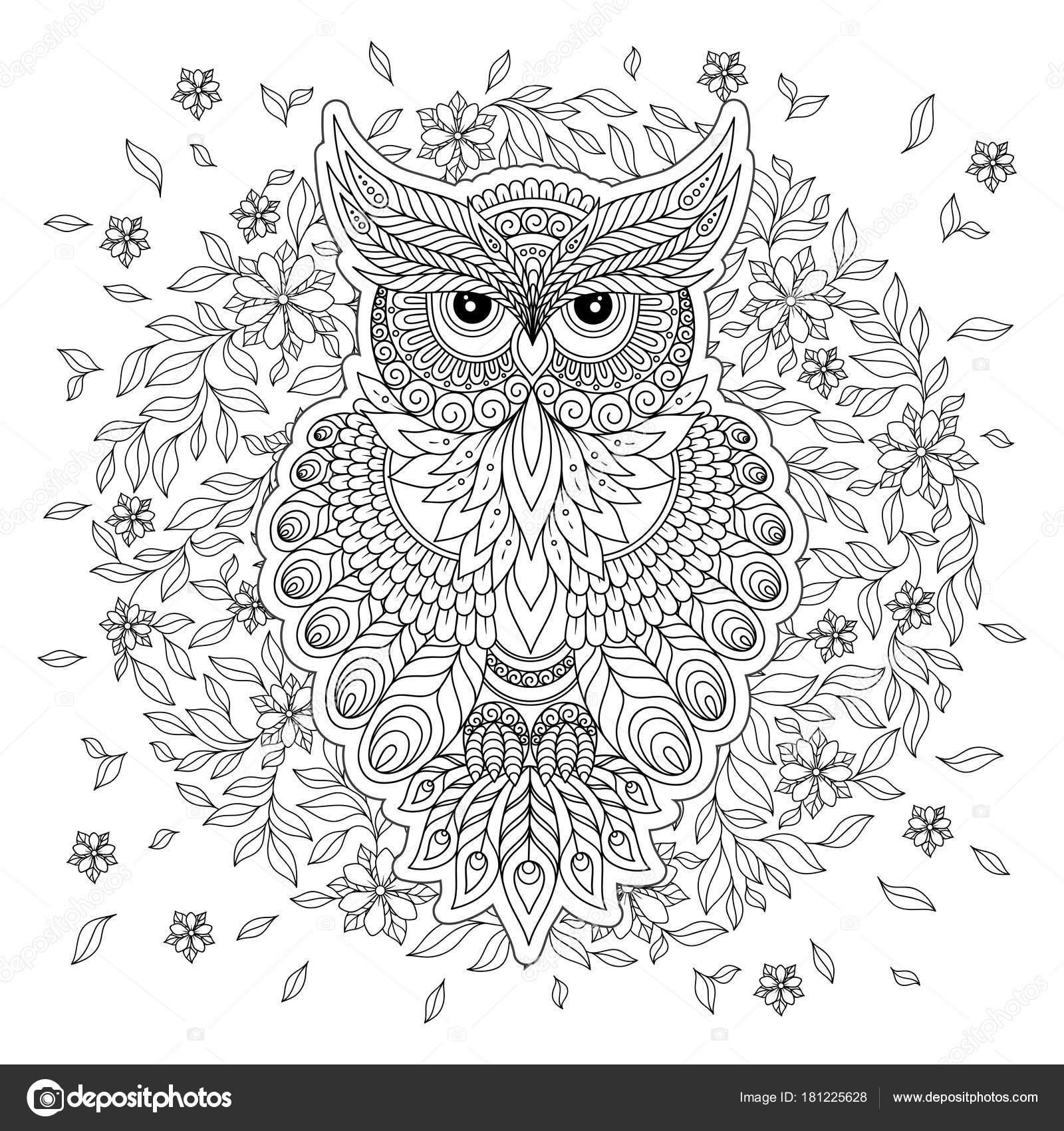 Página para colorear con búho lindo y marco flores — Archivo ...