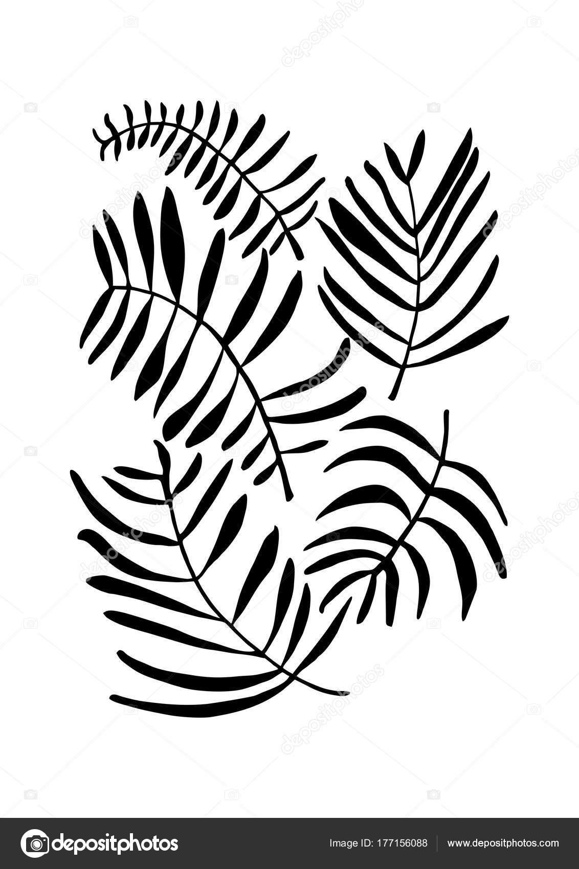 Photo Noir Et Blanc Design black white drawing | black white drawing pattern design