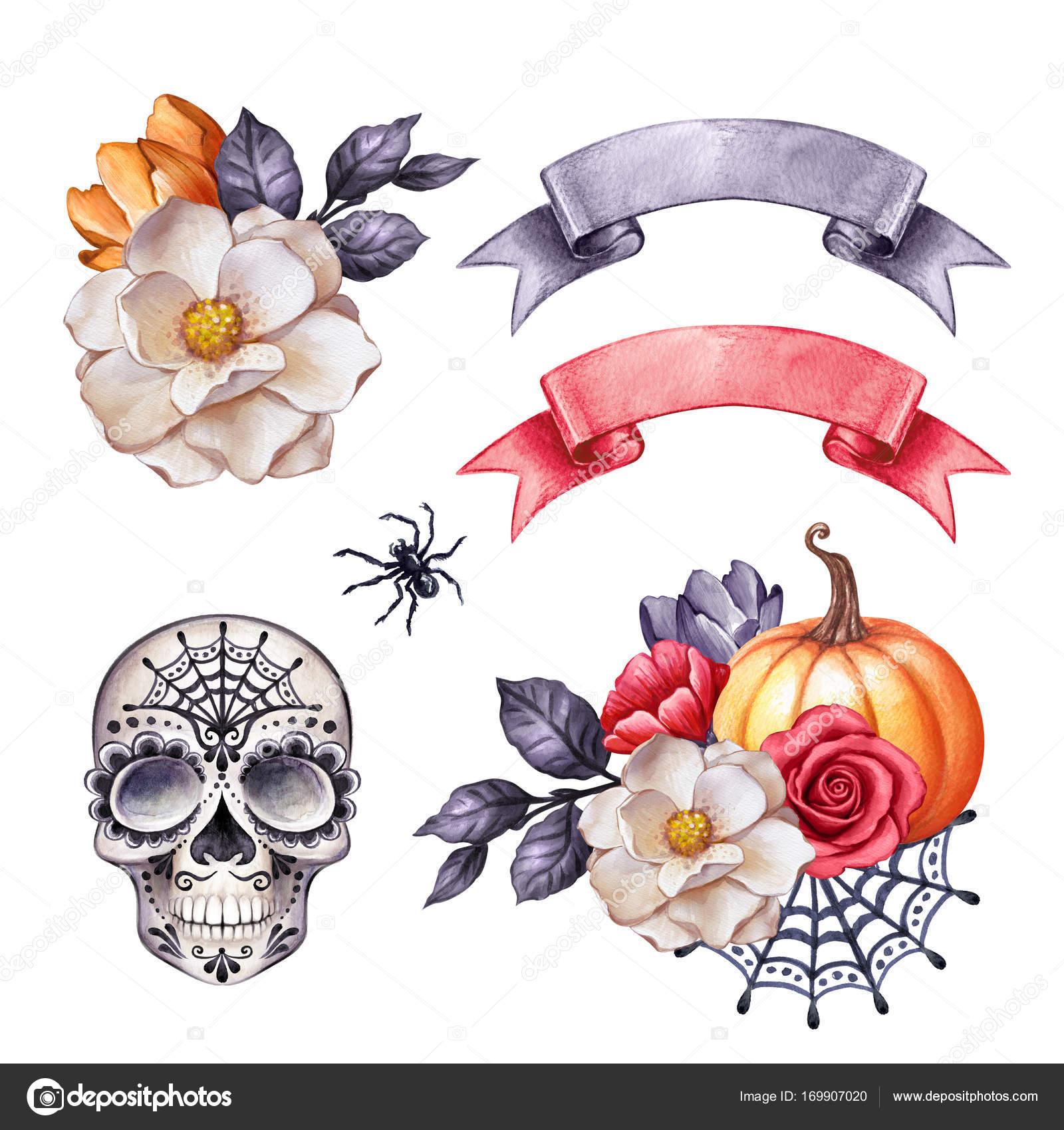 水彩イラスト、ハロウィーン クリップアート、秋のデザイン要素、頭蓋骨