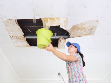 Young Woman Collecting Water In Bucket From Ceiling. Ceiling pan
