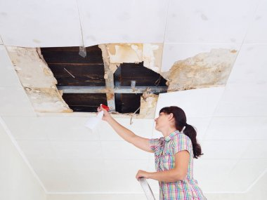 Young Woman cleaning mold on ceiling.Ceiling panels damaged huge