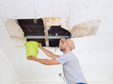 Man Collecting Water In Bucket From Ceiling. Ceiling panels dama