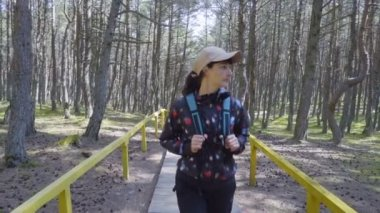 Young Woman travels through forest. Female tourist with a backpack walk through a forest road. Hiking outdoors on nature. Enjoying Nature at Camping.