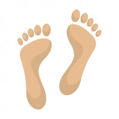 Print of foot vector icon.Cartoon vector icon isolated on white background print of foot .