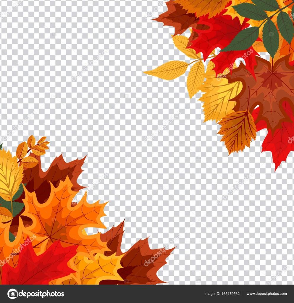 透明な背景に落ちる紅葉と抽象的なベクトル図 — ストックベクター