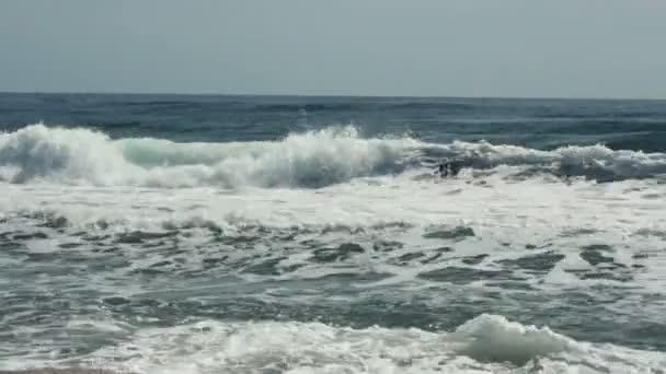 tidal bore at summer