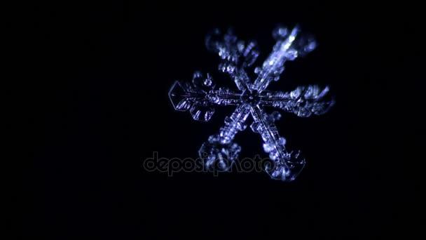 hópehely olvad a sötétben