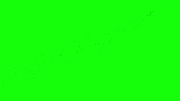 toku z černé vrány na zeleném pozadí
