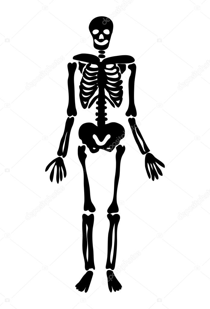 halloween skeleton vector symbol icon design stock vector rh depositphotos com skeleton vector cartoon skeleton vector free download