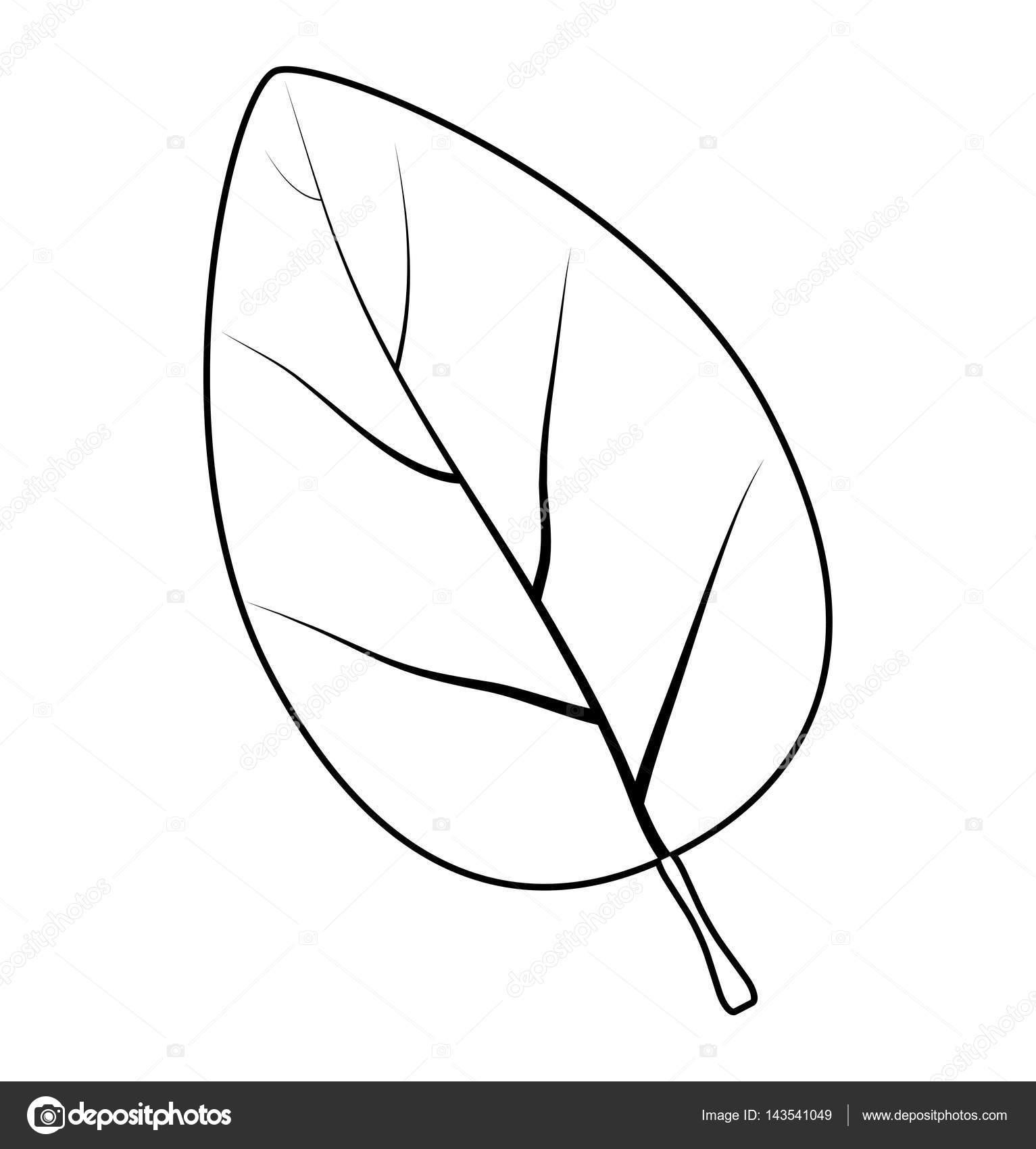 diseño de icono de símbolo de la hoja silueta vector — Archivo ...