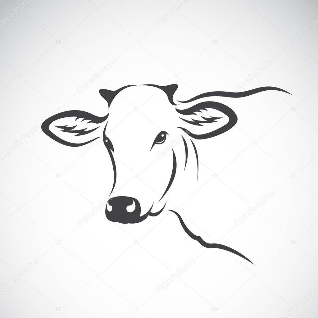 Imágenes Cabeza De Vaca Para Colorear Vector De La Imagen De Un