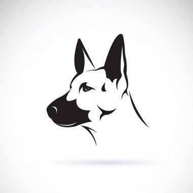 Vector of dog head (German shepherd) on white background, Pet. A