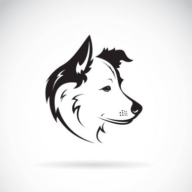 Vector of a border collie dog on white background. Pet. Animal.
