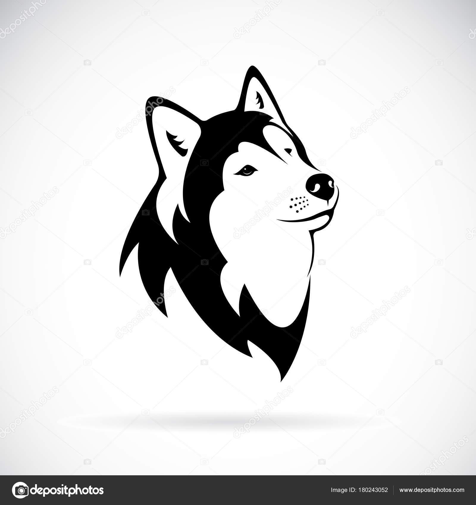 Dibujos La Etnia Negra Faciles Vector De Un Husky Siberiano De