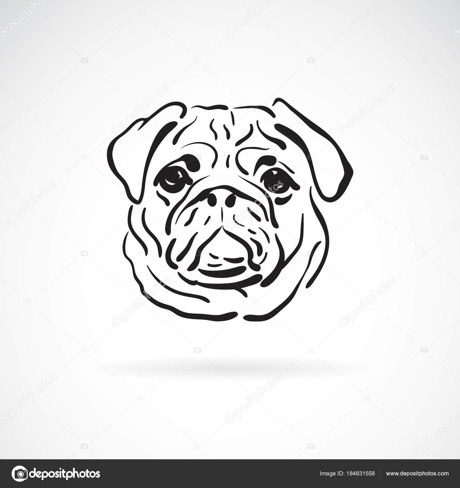 Vector de cara de perro pug en fondo blanco, animal doméstico ...