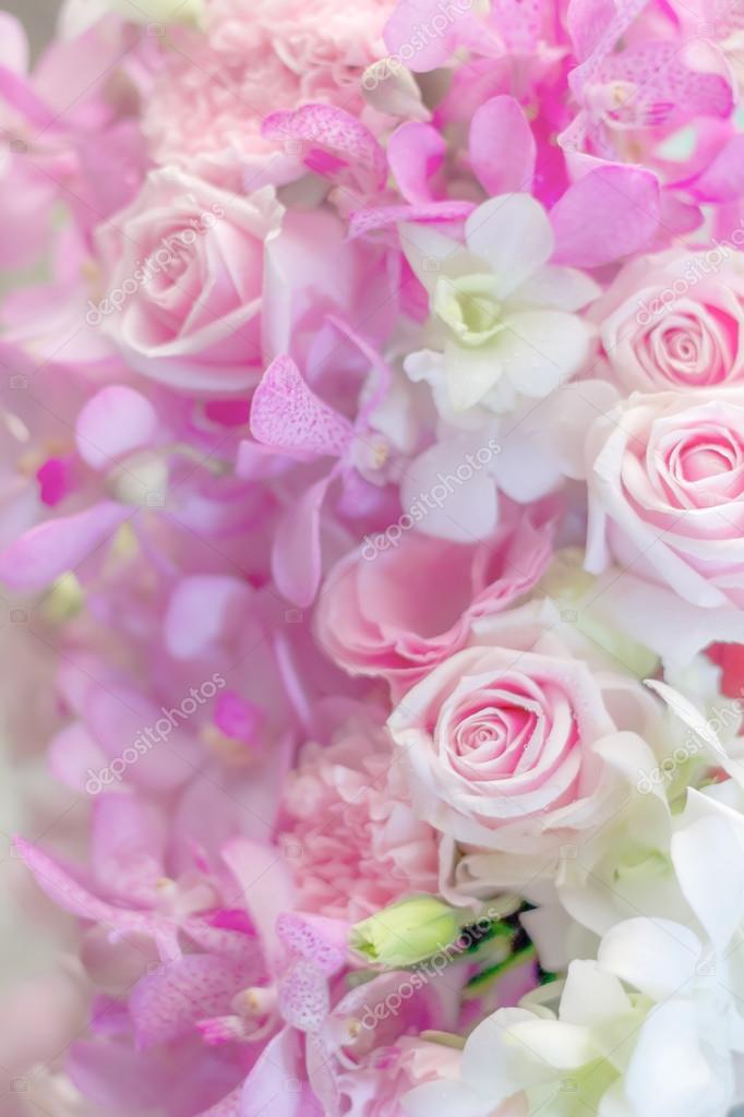 Fond fleur variété en couleur pastel \u2014 Photographie