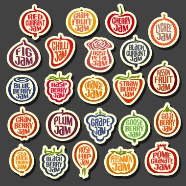 Vector Set colorful Fruits Jam icons