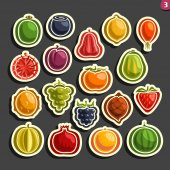 Vector Set icons of colorful Fruits and Berries