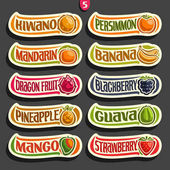 Vector Set of colorful Fruits and Berries Labels