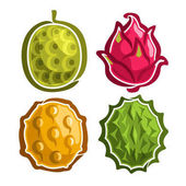 Vector Set icons of colorful exotic Fruits