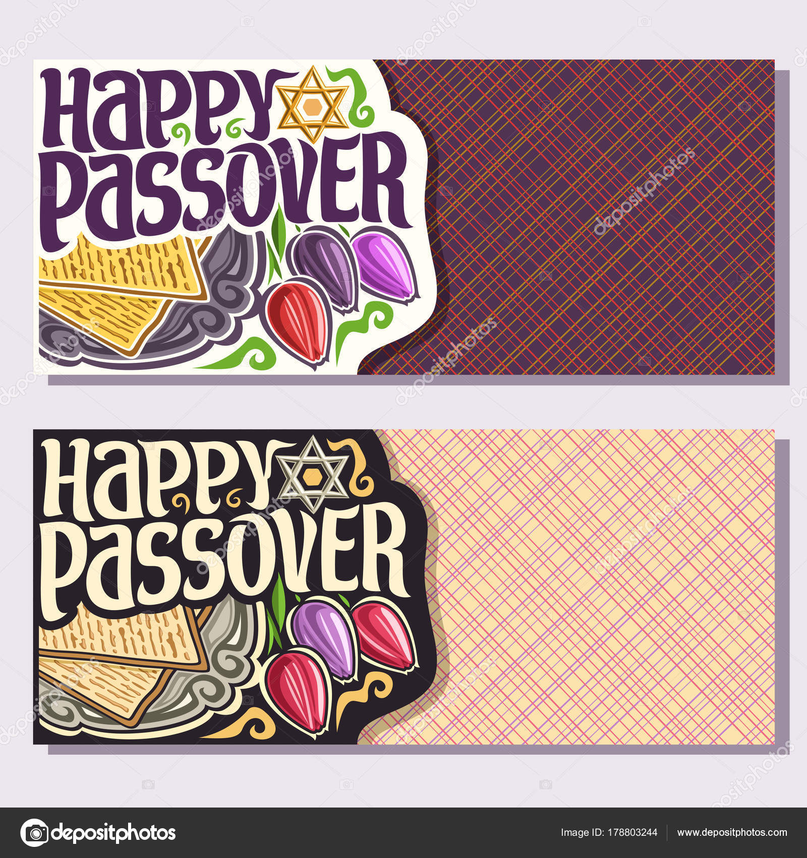 Vector greeting cards passover holiday copy space decorative vector greeting cards passover holiday copy space decorative handwritten font stock vector m4hsunfo